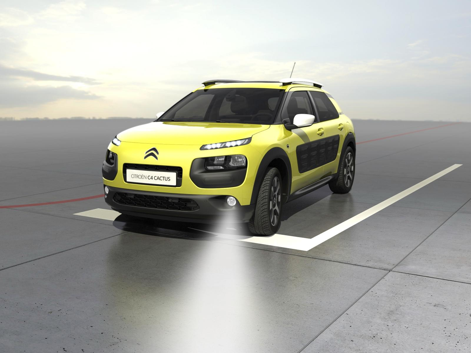 C4 Cactus 2014 static intersection lighting